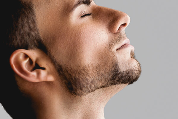 beard neckline